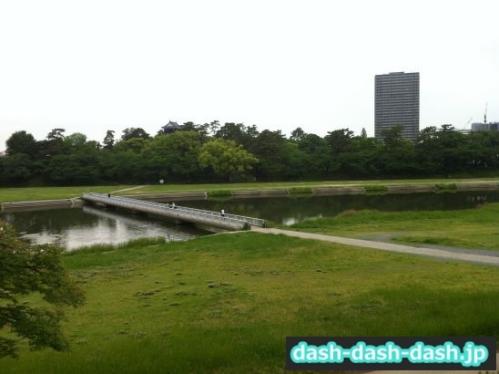 乙川南側の川原