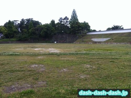岡崎公園芝生広場