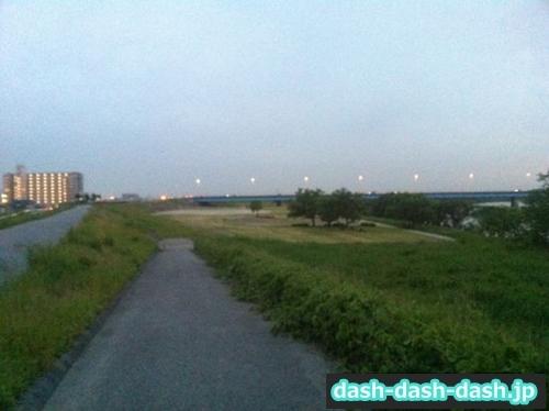 矢作川左岸(第10号渡橋河川緑地付近)