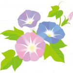 朝顔の葉っぱを折り紙で!簡単&ホンモノそっくりなのはコレ!