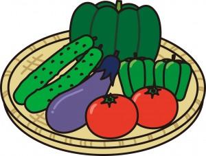 野菜(かぼちゃ・きゅうり・なす・ピーマン・トマト)のイラスト