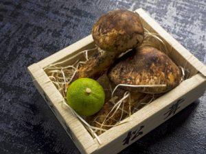 松茸(保存方法)