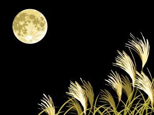 中秋の名月(満月)のイラスト