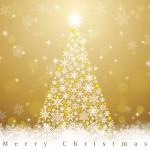 クリスマスプレゼントに雑貨!ランキングを見ながら決めよう!