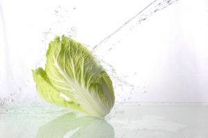 白菜と水しぶき