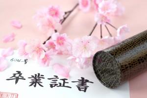 卒業証書と桜(卒業式)