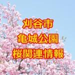 刈谷市 亀城公園の桜2016!屋台&駐車場&ライトアップ情報!