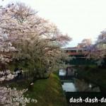 各務原 市民公園の桜祭り2017!屋台(祭り会場・新境川堤)の状況は?