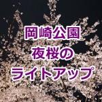 岡崎公園 桜のライトアップ!時間や場所は?屋台の出店状況は?