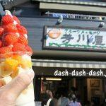 犬山城の城下町で食べ歩き!串グルメからスイーツまでおすすめ7選