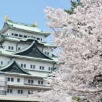 名古屋近辺の桜スポット2017(市内・愛知・岐阜南)まとめ【16記事】