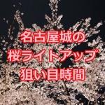名古屋城の桜のライトアップ2016!時間の狙い目は?駐車場は?