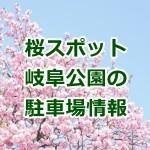 岐阜公園の桜!駐車場は?2017年のライトアップは?