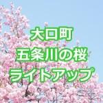 愛知県 大口町の桜2017!五条川のライトアップ&おすすめ駐車場!