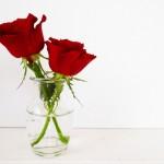 花瓶!おしゃれ&北欧ブランド&ガラス製限定!おすすめランキング