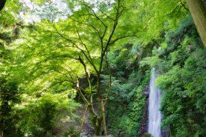 養老の滝(岐阜県)