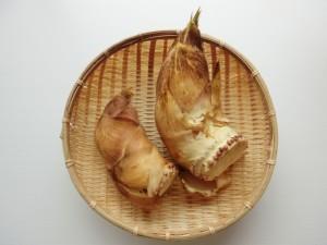 たけのこ 刺身 食べ方
