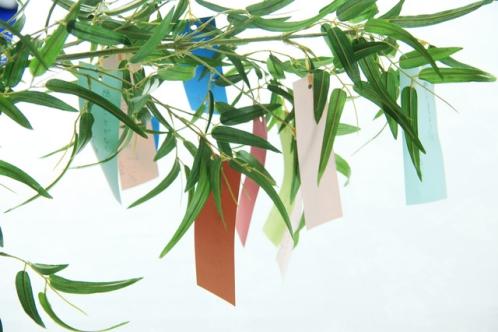 七夕の笹飾りと短冊