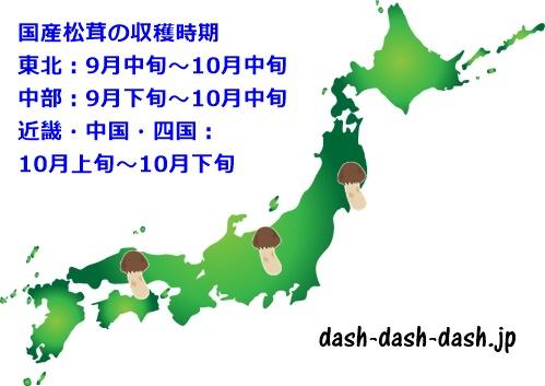 国産松茸の時期(旬)