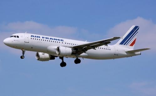 飛行機による空輸(エールフランス)