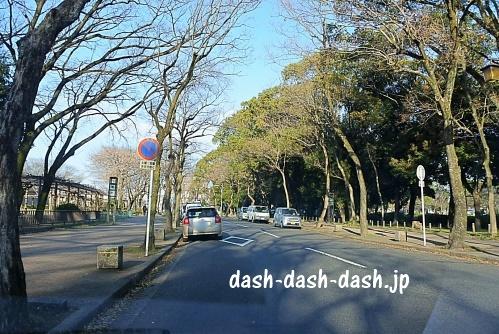 名古屋城(名城公園)道路