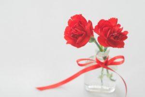 真っ赤なカーネーションと花瓶(母の日)