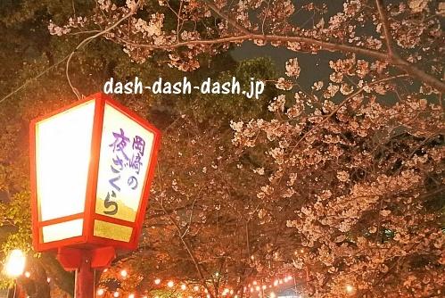 岡崎公園(岡崎城)の桜01
