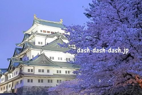 名古屋城と桜01