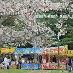 刈谷市 亀城公園の桜2017!屋台&駐車場&ライトアップ情報!