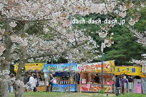 刈谷市亀城公園の桜02