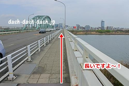 新淀川大橋(大阪駅側から上ったところ)02