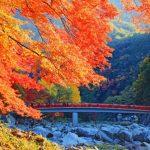 香嵐渓の紅葉の見ごろ(2017年)は?とっておきの渋滞対策も紹介するよ