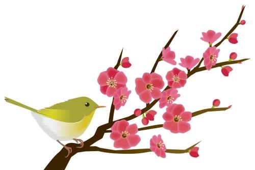 梅の花とうぐいす