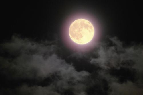 空高くに輝く満月(スーパームーン)
