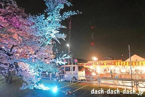 大口町の桜ライトアップと屋台