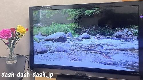 川のせせらぎ音(YouTube動画)