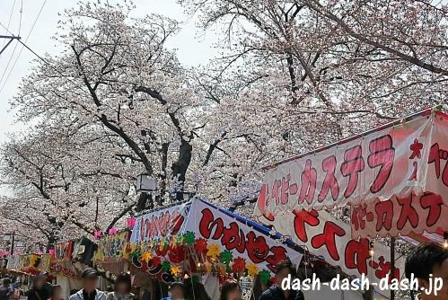 [五条川]岩倉桜まつりの屋台(ベビーカステラ・いかやき)