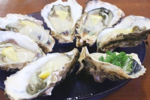 生牡蠣の盛り合わせ(カキ)