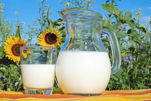 牛乳(ミルク)