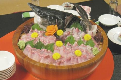チョウザメの刺身(お造り)