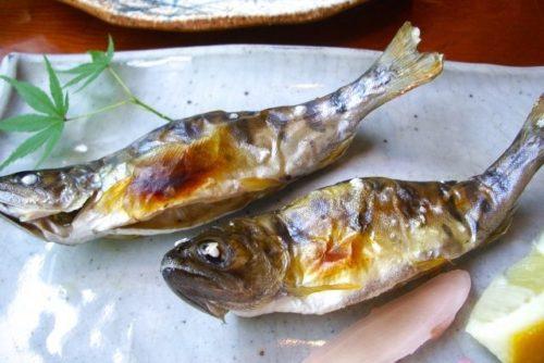 ヤマメの塩焼き(天然)