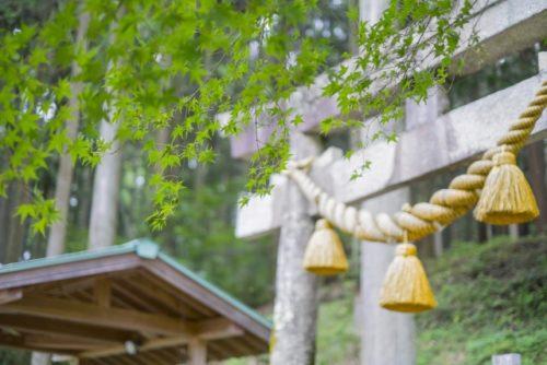 関市板取の根道神社(鳥居)