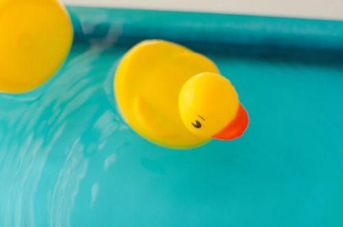 水中のアヒルのおもちゃ(ぷかぷか)